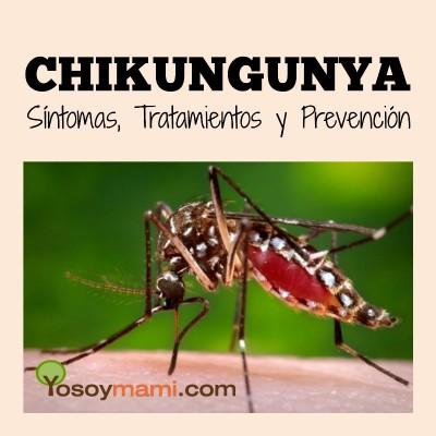 Chikungunya - Síntomas, Tratamientos y Prevención | Yosoymami.com