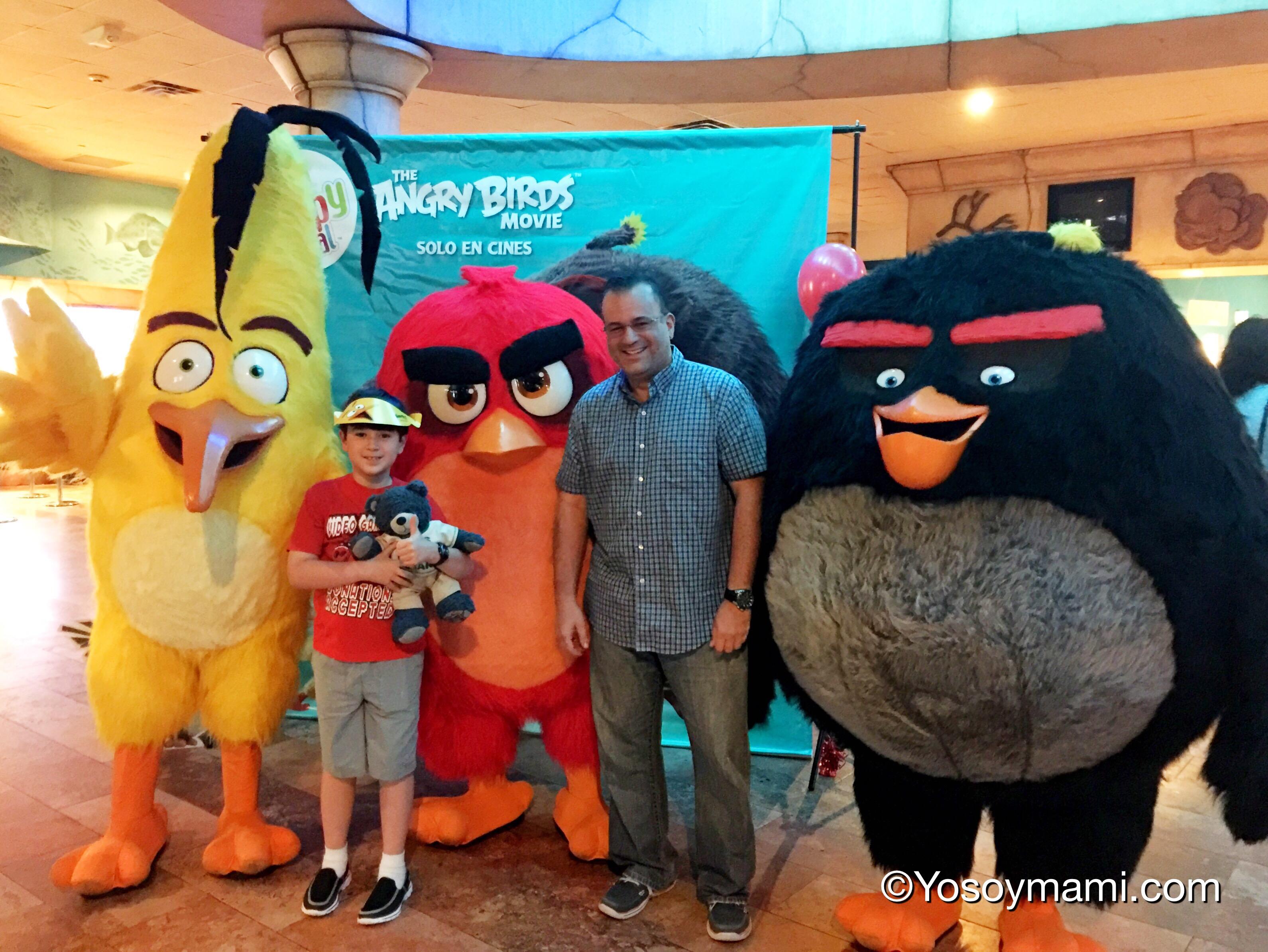Foto de la Semana: Angry Birds